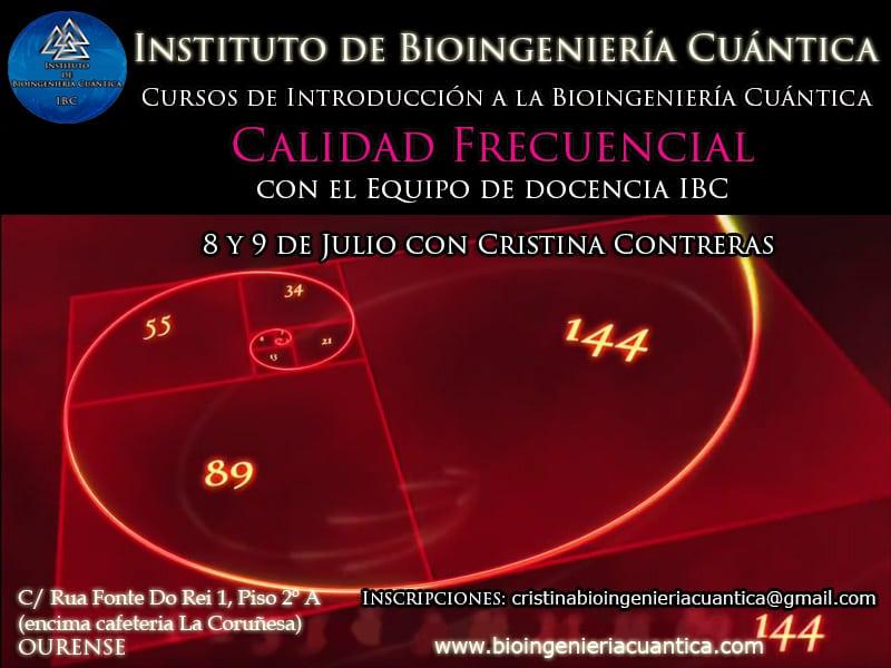 Curso de Introducción a la Bioingeniería Cuántica. Ourense – ESPAÑA 2017
