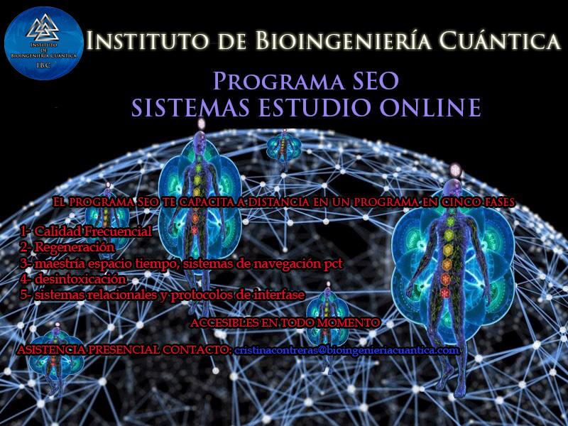 Programa SEO con Sandra Fernández y Equipo IBC Sistemas Estudio Online