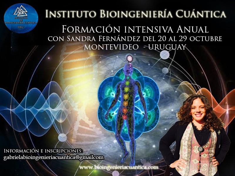Formación de Terapeutas Bioingeniería Cuántica. Montevideo – URUGUAY 2017