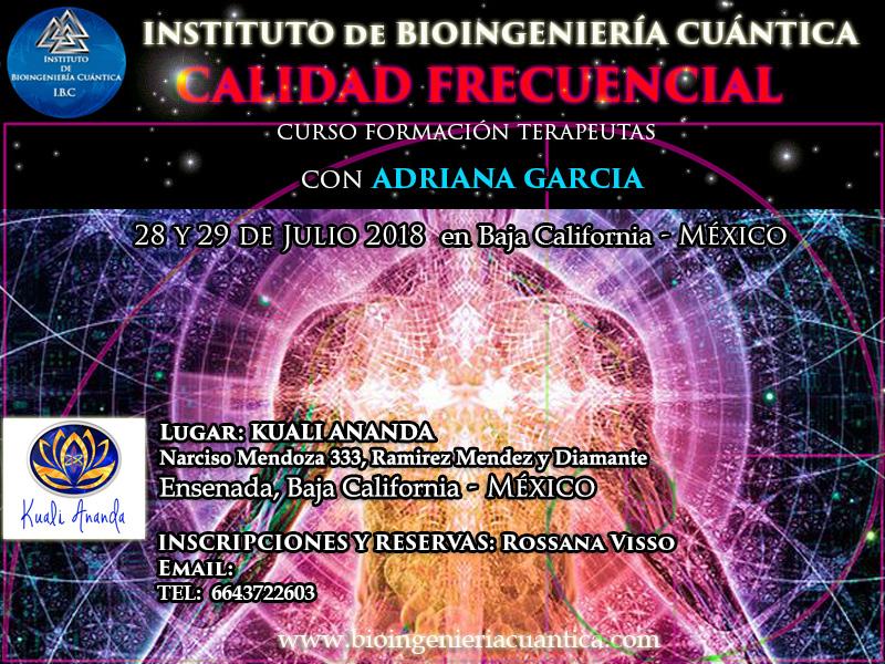 Curso de Introducción a la Bioingeniería Cuántica con Adriana Garcia  28 y 29 julio 2018. MÉXICO @ KUALIANANDA