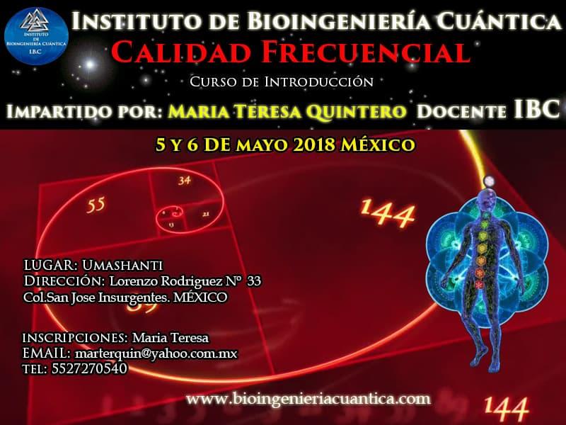 Curso de Introducción a la Bioingeniería Cuántica con Mª Teresa 5 y 6 may 2018. MÉXICO @ UMASHANTI
