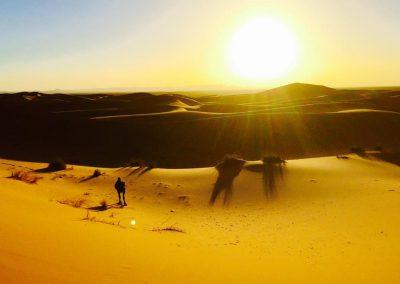 Instituto de Bioingeniería Cuántica - Cuarentena en el Desierto 1