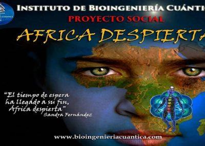 Bioingeniería Cuántica Imagenes Sandra 8